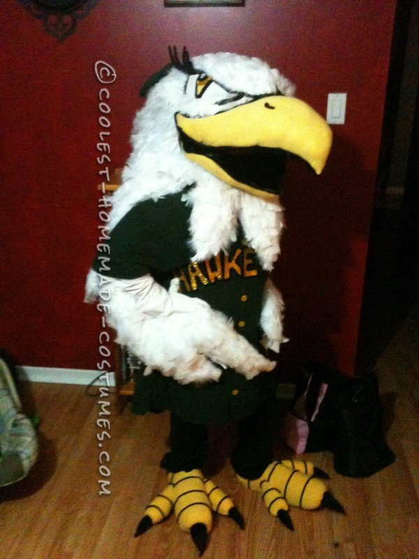 Entirely Homemade Hawkettes Mascot Costume