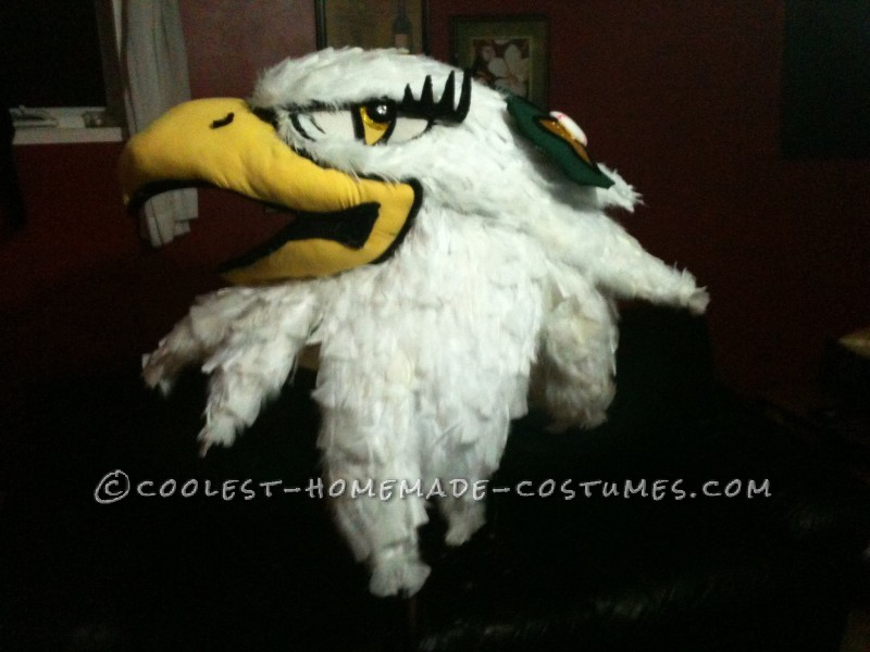 Entirely Homemade Hawkettes Mascot Costume - 3