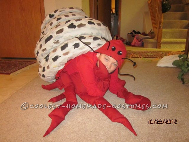 Coolest Homemade Hermit Crab Halloween Costume Idea