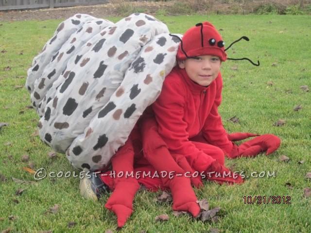 Coolest Homemade Hermit Crab Halloween Costume Idea - 1