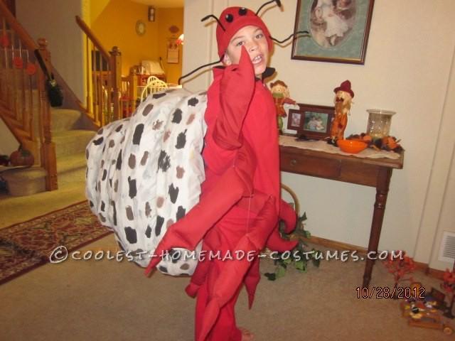 Coolest Homemade Hermit Crab Halloween Costume Idea - 2