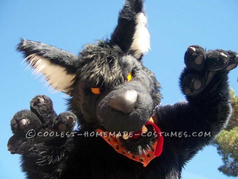 Original DIY Werewolf Costume (Named Kessler D. Quist)