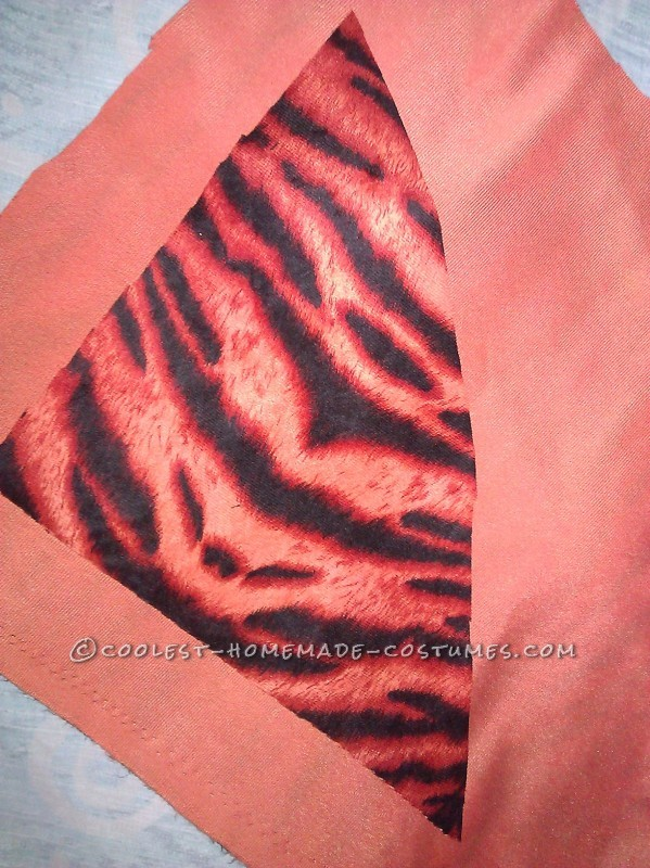 Miss Tiger Costume - 6