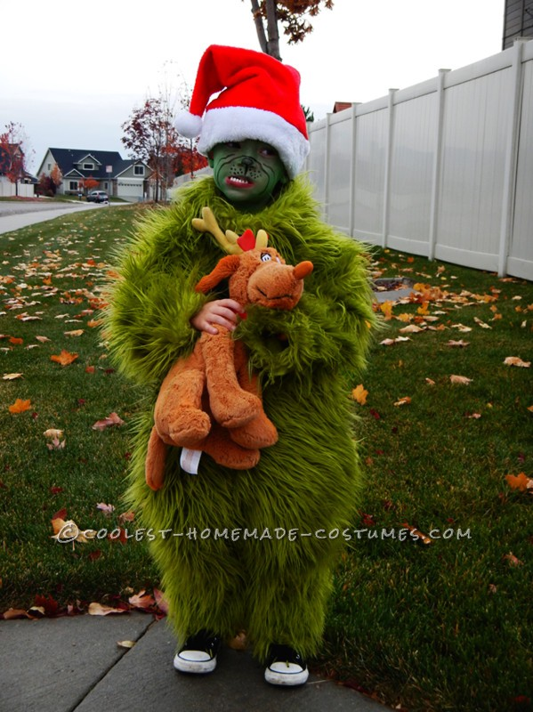 Cool Homemade Halloween Costume The Grinch Who Stole