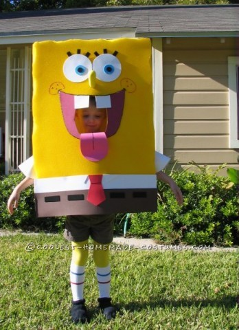 Homemade Spongebob Costume: People Thought SpongeBob was Part of the Show!