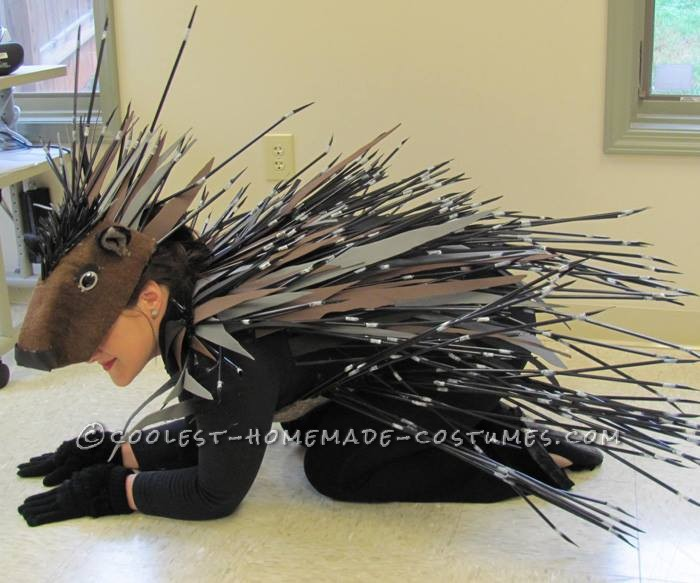 Cool Homemade Porcupine Costume