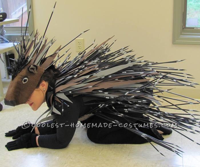 Cool Homemade Porcupine Costume