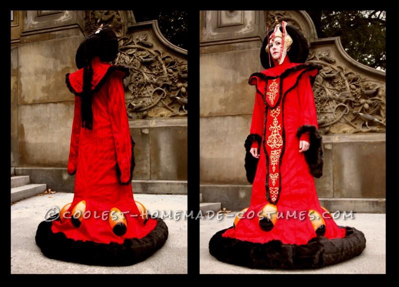 Awesome Handmade Queen Amidala Halloween Costume