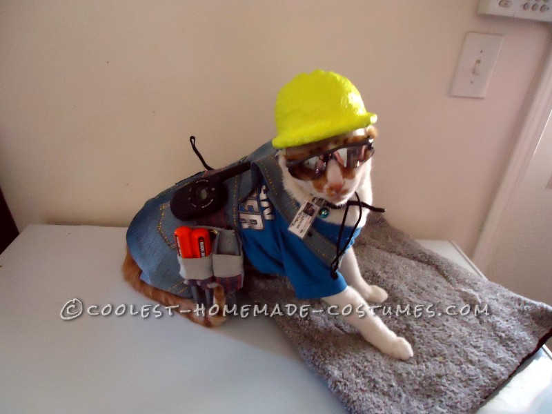 The Coolest Construction Worker Costume Ever (for a Cat!) - 1