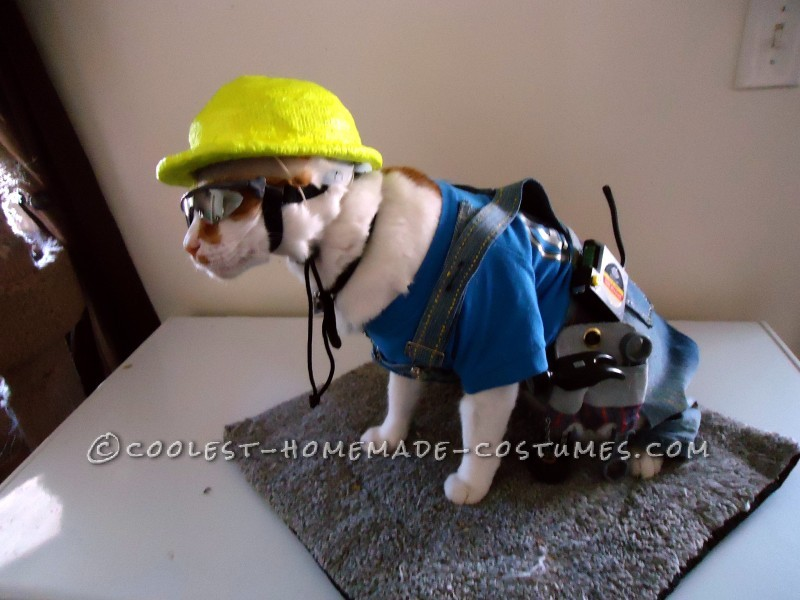 The Coolest Construction Worker Costume Ever (for a Cat!)