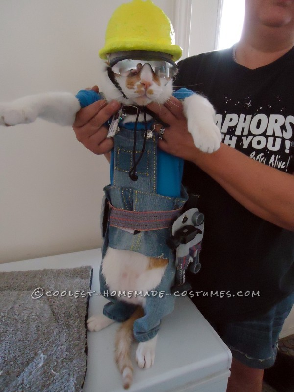The Coolest Construction Worker Costume Ever (for a Cat!) - 3