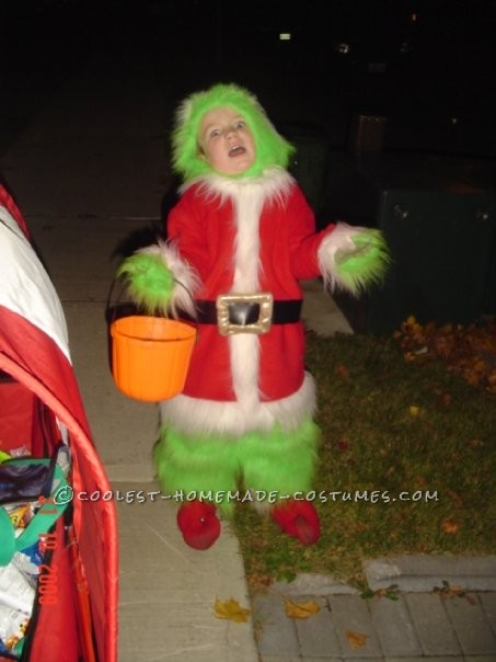 The Grinch that Stole Halloween Costume Idea for a Child