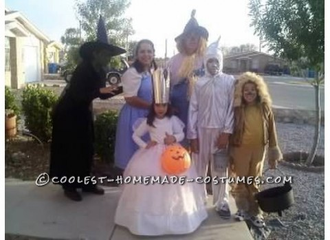 Fun Homemade Wizard of Oz Family Costume