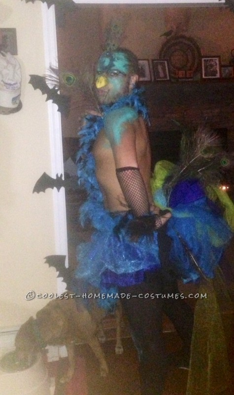 Last Minute Homemade Peacock Costume for a Man - 1