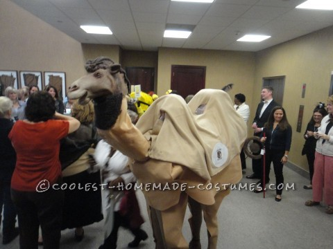 Fun Double-Hump Couple Camel Costume