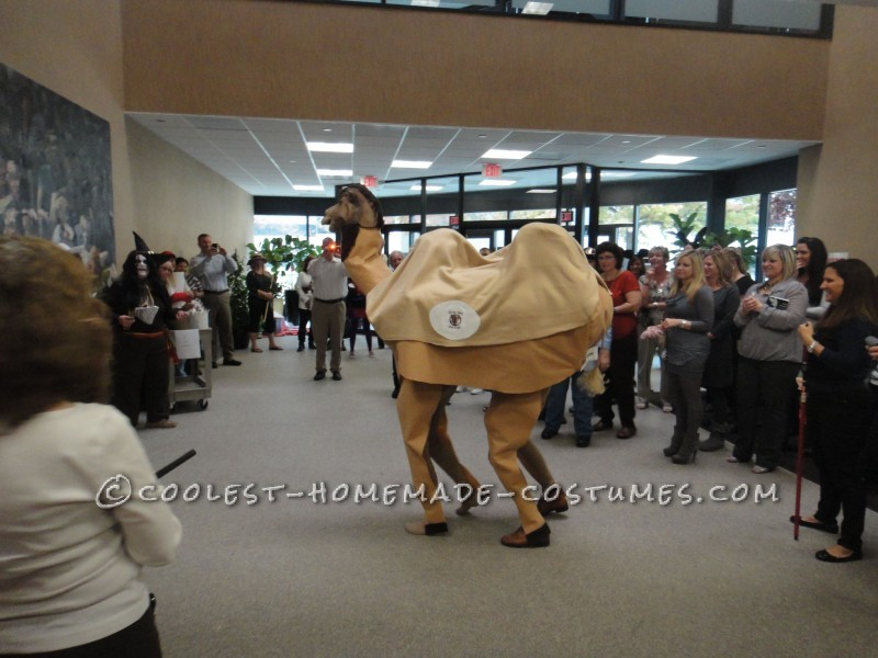 Fun Double-Hump Couple Camel Costume - 1