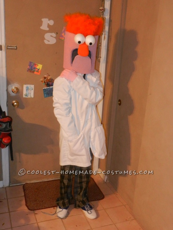 Family Muppet Costumes - 2