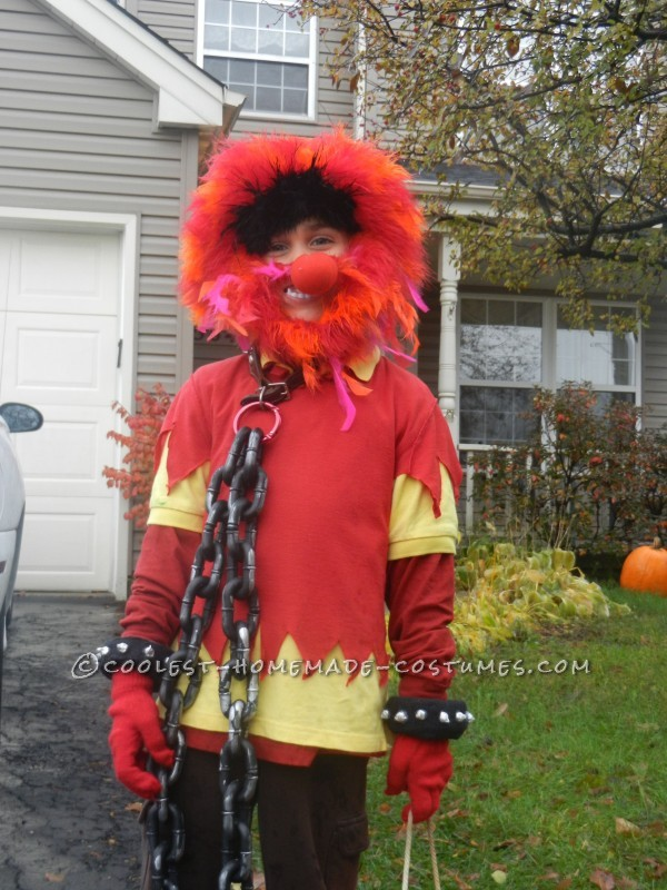 Family Muppet Costumes - 3