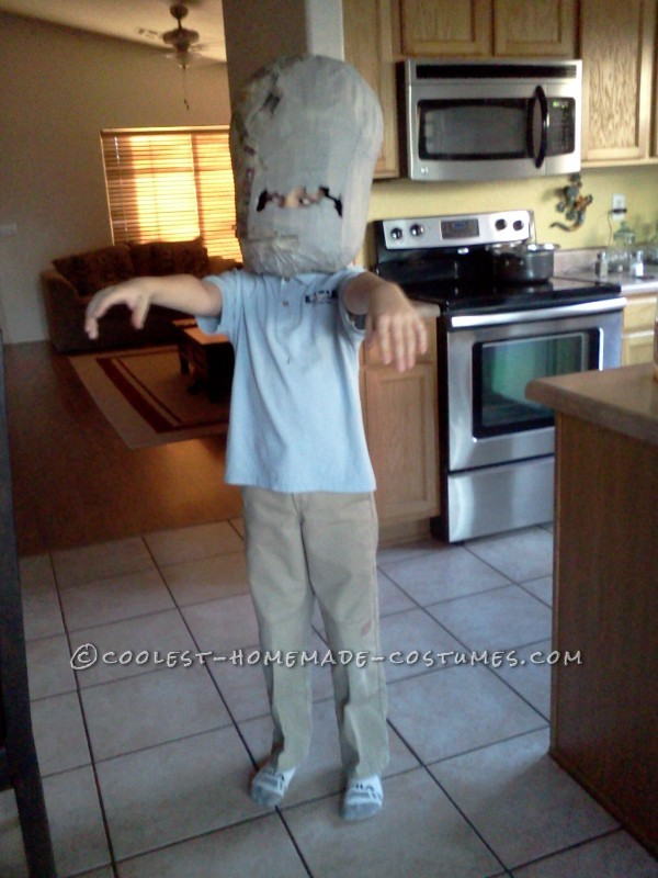 Coolest Homemade Plants Vs. Zombies Costume - 4