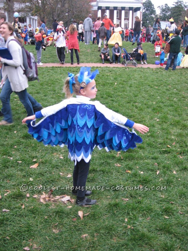 Little Chicken and Blue Bird Costumes for Brother and Sister - 5