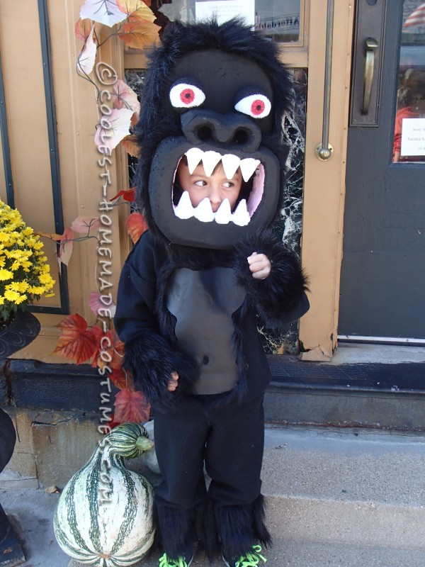 Awesome Homemade Gorilla Costume for a Boy - 2