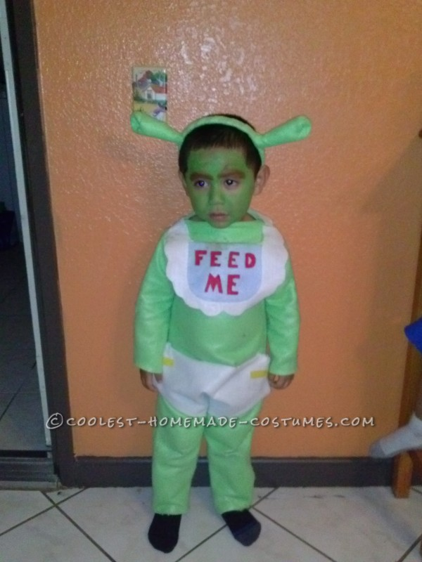 Gingy Cookie and Shrek Costumes - 1