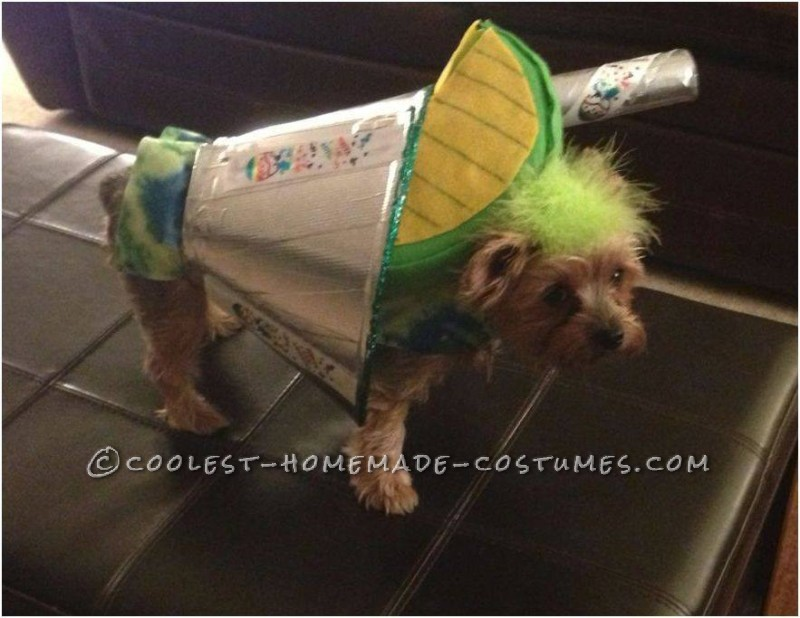 Barkarita Dog Costume