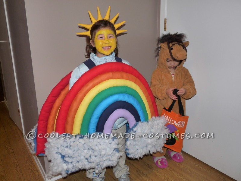 Beautiful Homemade Rainbow Costume
