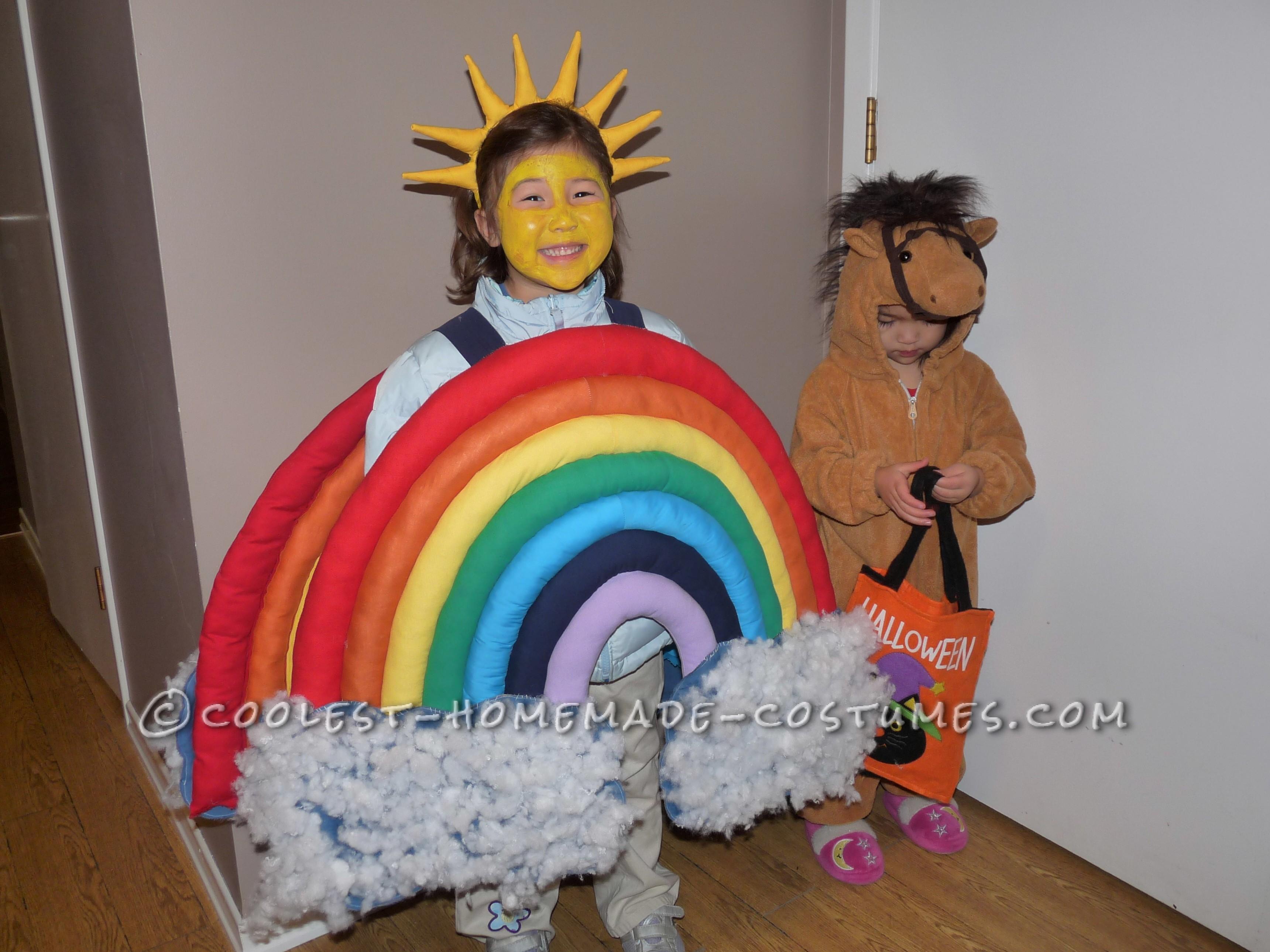 Beautiful Homemade Rainbow Costume