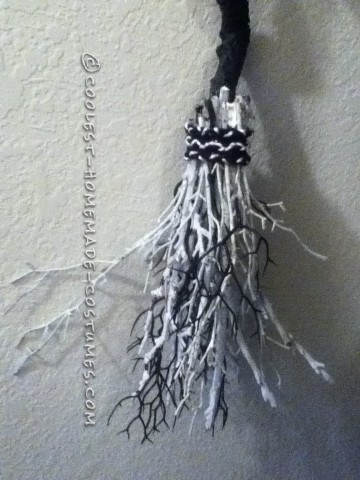 Bodacious Black and White Witch Costume (On a Budget)