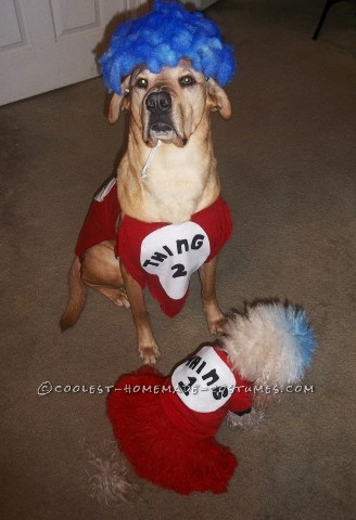 Woman's Cat in the Hat Costume with Pet Dogs Thing 1 Thing 2