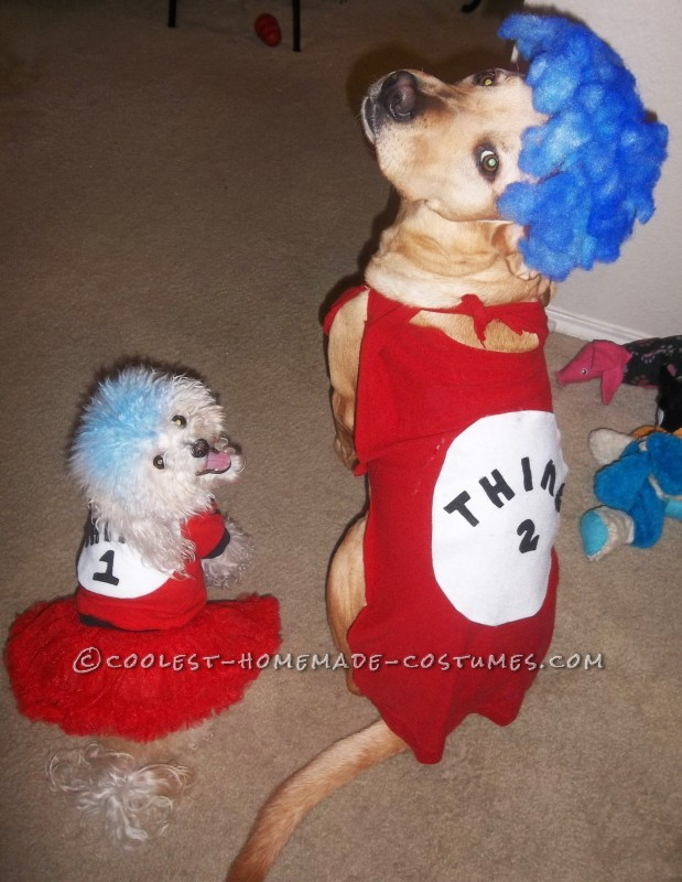 Woman's Cat in the Hat Costume with Pet Dogs Thing 1 Thing 2 - 1