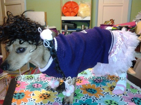 Cheeleader Costume for Dog