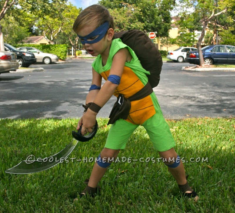 Coolest and Cheapest Homemade Ninja Turtle Costumes - 2