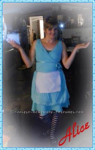 Creative Alice in Wonderland Family of Four Costume