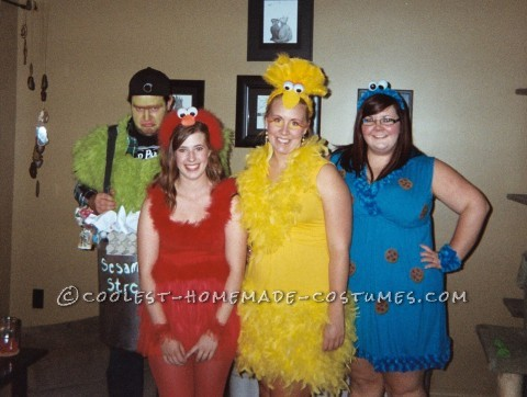 Cute Homemade Sesame Street Crew Group Costume