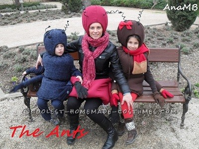 Cutest Family of Ants Ever!
