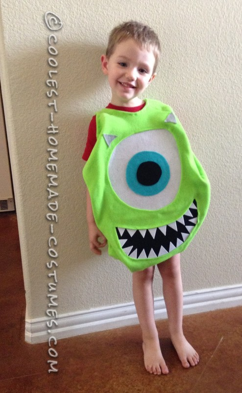 My son trying on his costume before the pillow was made