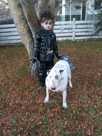 Cool Last-Minute Edward Scissorhands Boy Costume and Frankenweenie Pet Dog Costume