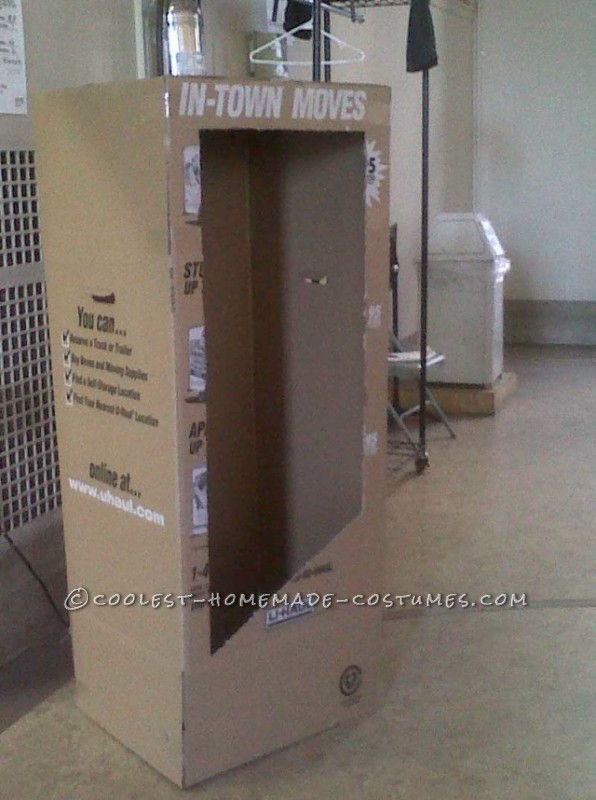 Fantastic Barbie and Ken (in the Boxes!) Costumes - 5