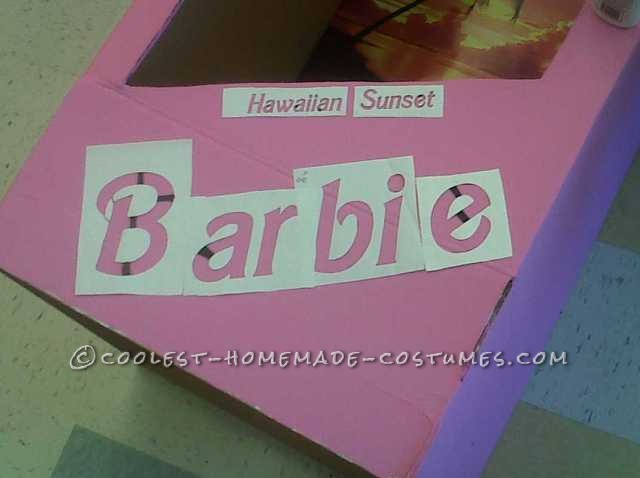 Fantastic Barbie and Ken (in the Boxes!) Costumes - 7