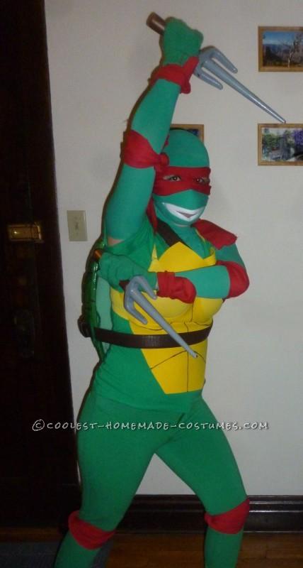 Ninja Turtle Ash Attack