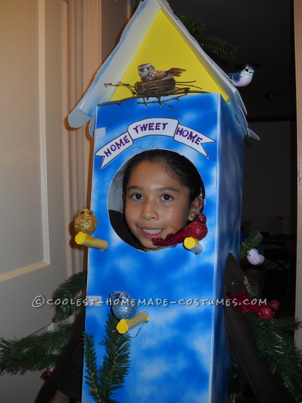 Cool Birdhouse Halloween Costume: Home Tweet Home! - 1