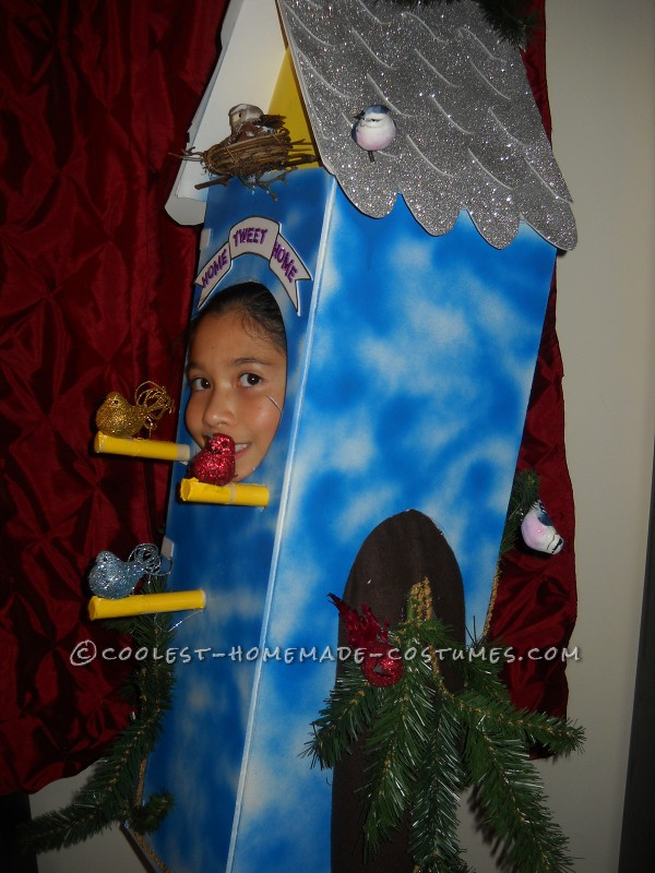 Cool Birdhouse Halloween Costume: Home Tweet Home! - 3