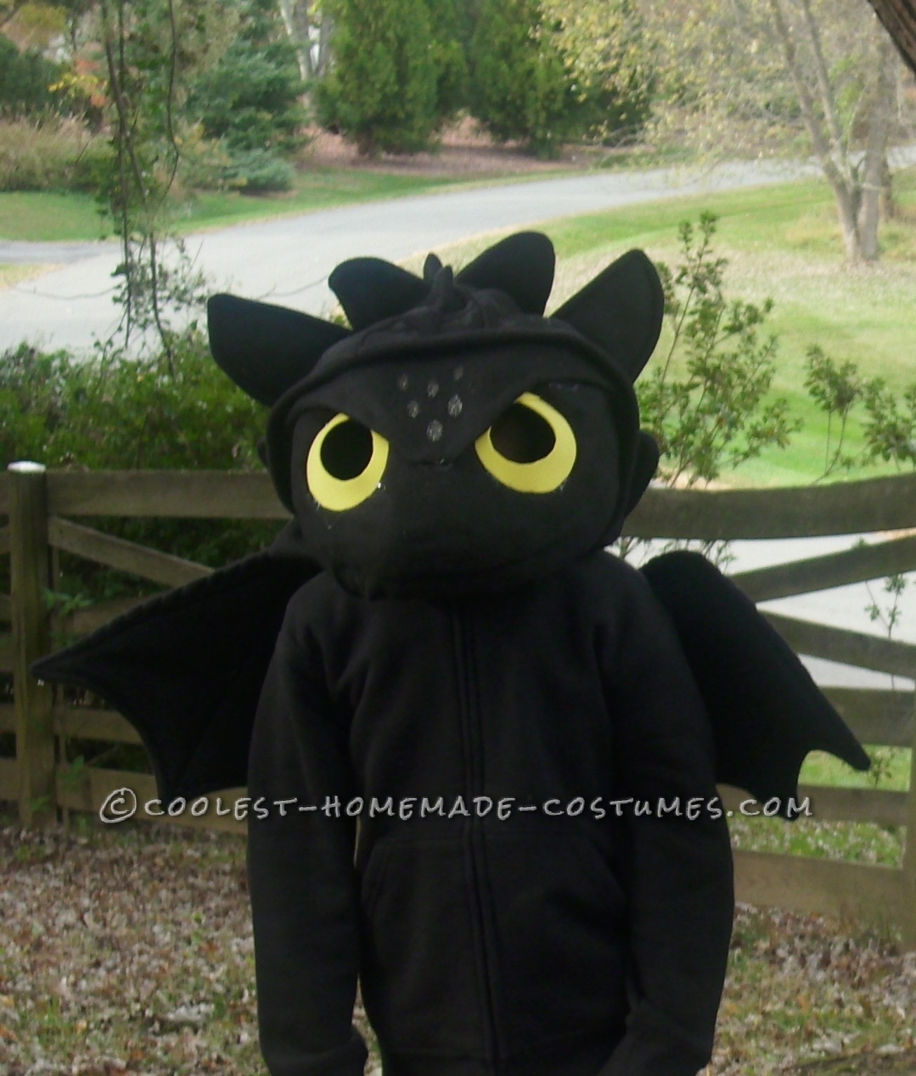 How to Train Your Dragon Homemade Toothless Costume