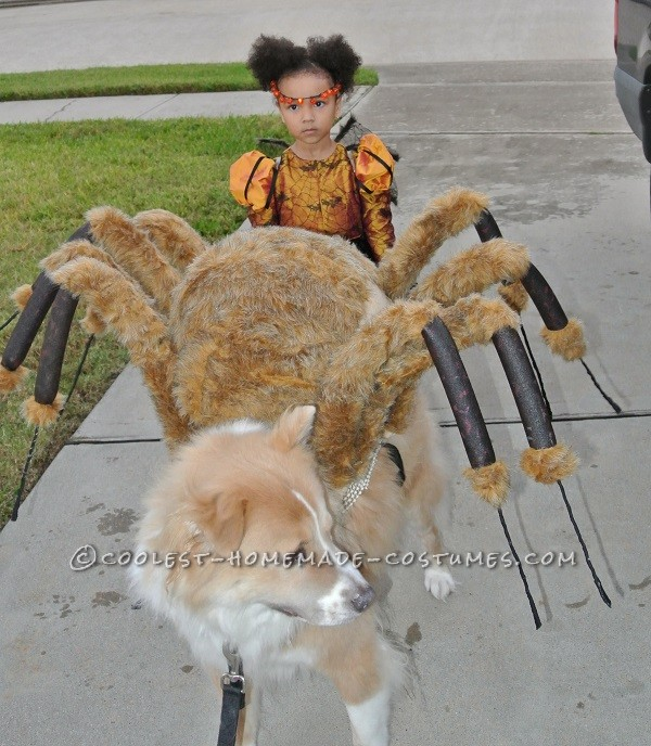 Spider Princess and her large pet spider