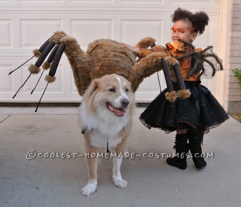 Pet Dog Spider Costume and Toddler Spider Princess