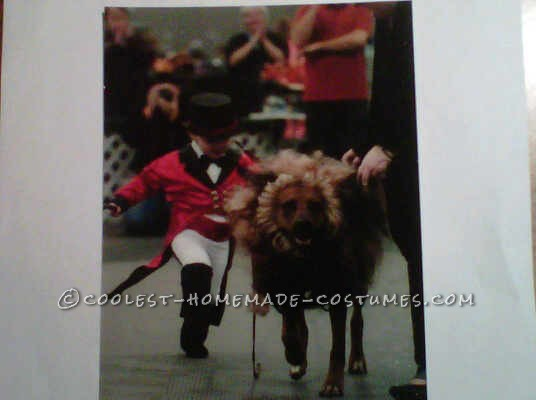 This is when my son went to rescue the lions tail and had to chase him in the ring