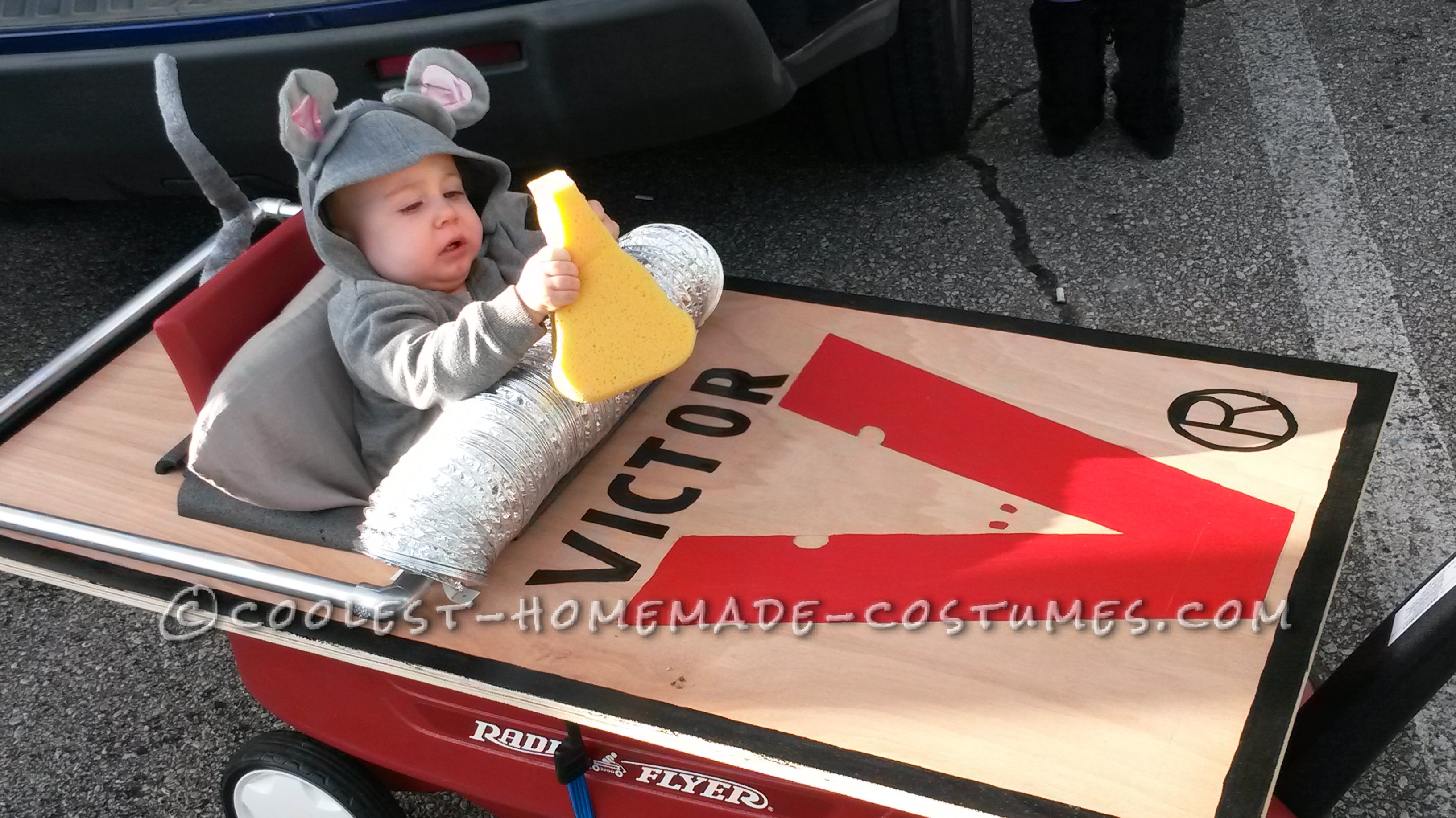 Baby Mouse's First Halloween Costume (And he got the Cheese!)