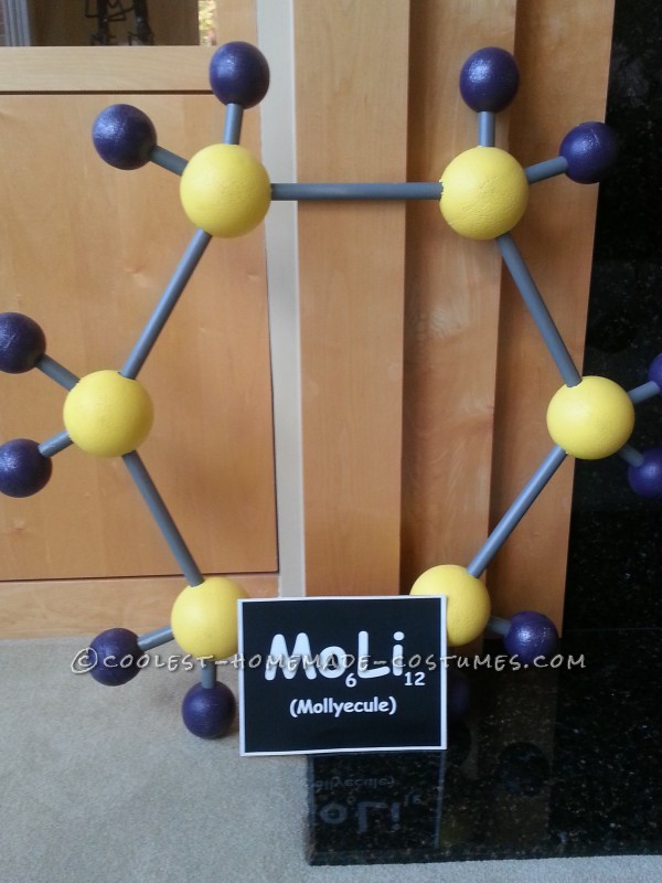 Molly-ecule Costume for Science-Loving 6th Grader Named Molly...